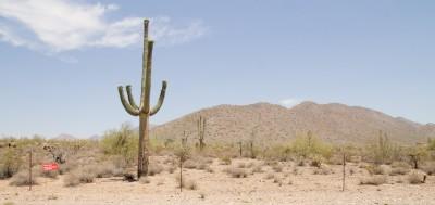 Frank Lloyd Wright Foundation, Phoenix, Arizona